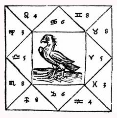 Black Bird 185.jpg